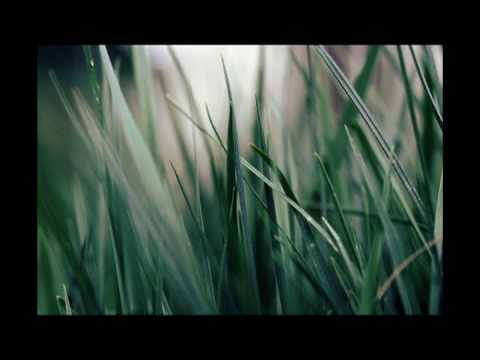 Ben Nevile | Van – Cabanne RX