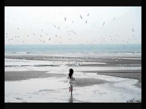 Fink   Naked For Life (Gorje Hewek remix)